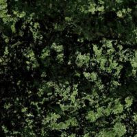 DARK-GRANITE-GREEN